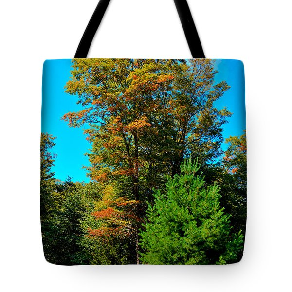 On Top of Maple Ridge - Old Forge New York Tote Bag by David Patterson