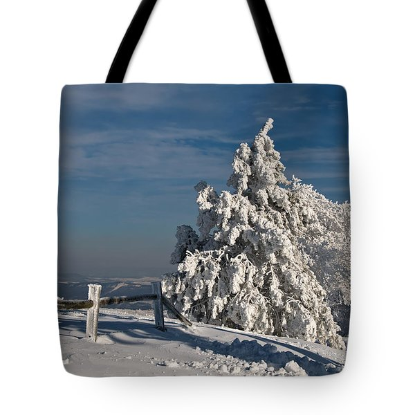 On Top Of The World Tote Bag by Lois Bryan