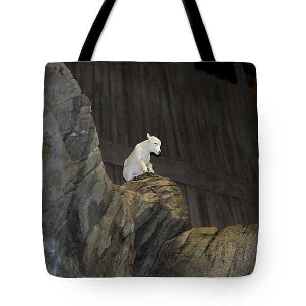 On Top Of The World Tote Bag by Tara Lynn