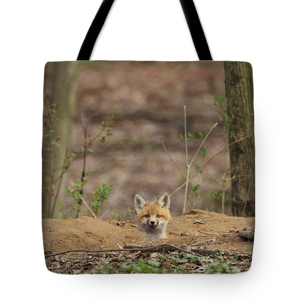 One Last Look Tote Bag by Everet Regal