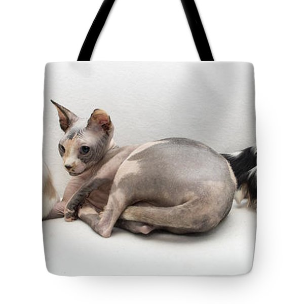 One Of These Is Not Like The Others Tote Bag by Jeannette Hunt