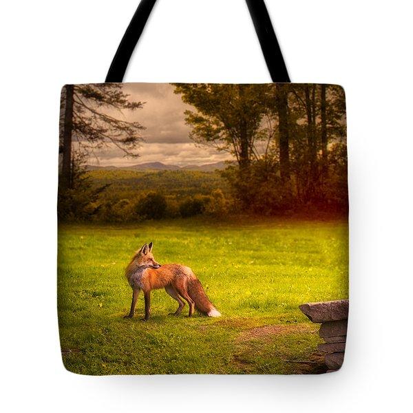 One Red Fox Tote Bag by Bob Orsillo