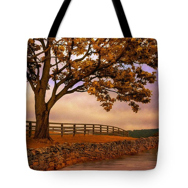 One Tree Hill Tote Bag by Lois Bryan
