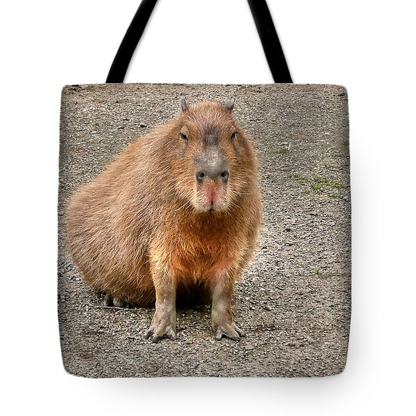 One Very Big Indifferent Rodent-the Capybara Tote Bag by Eti Reid