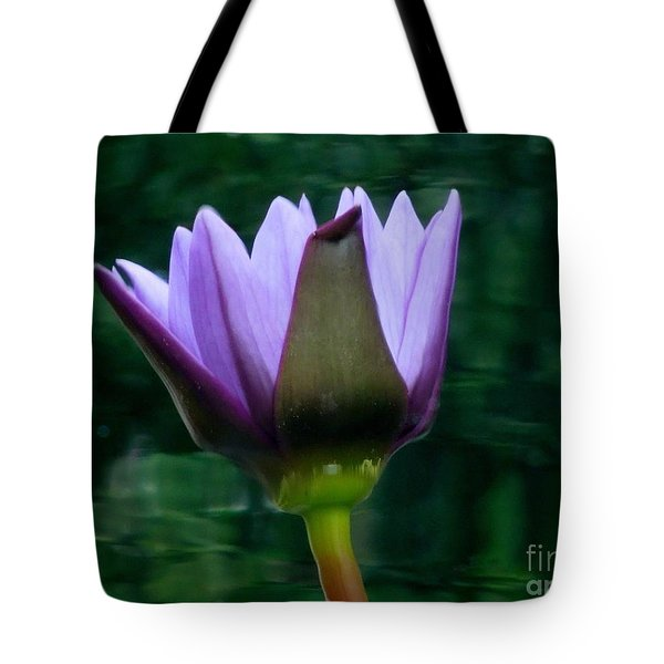 Only A Reflection Tote Bag by Chad and Stacey Hall