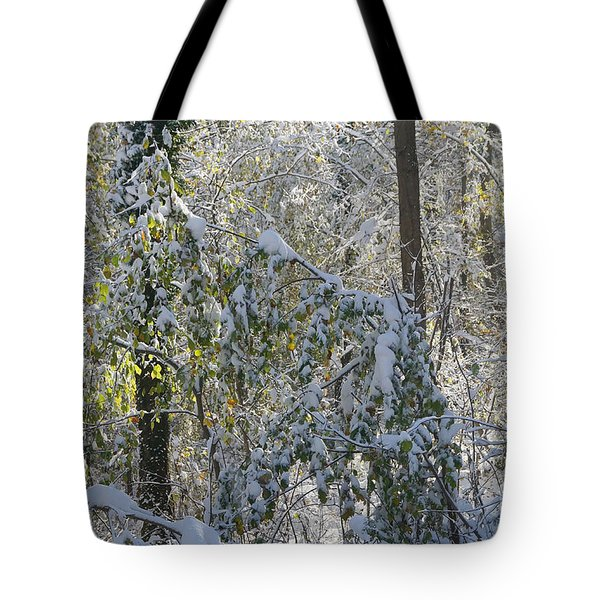 Onset Of Winter 2 Tote Bag by Rudi Prott