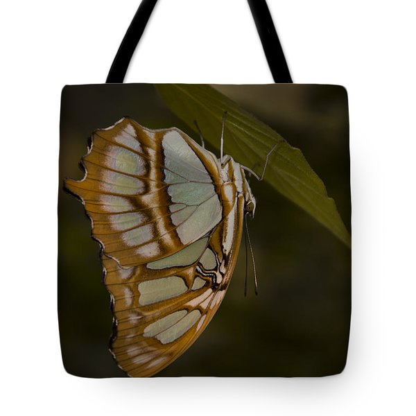 Opal Tote Bag by Penny Lisowski