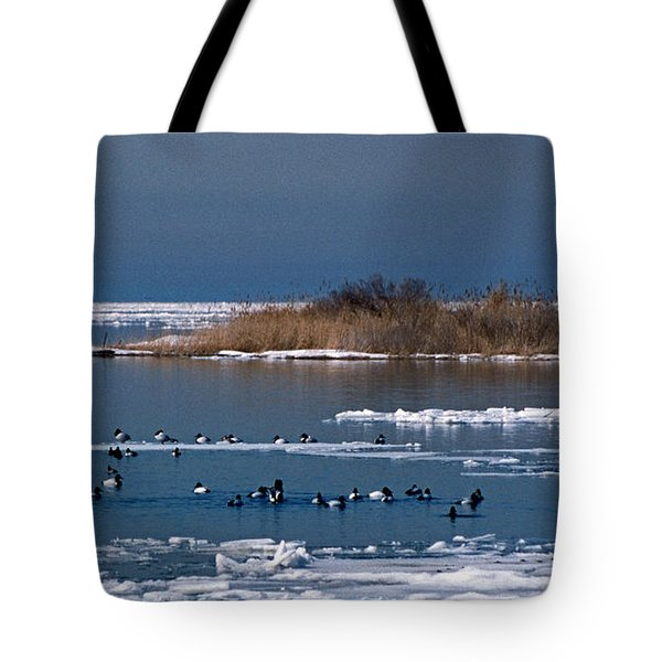 OPEN WATER Tote Bag by Skip Willits