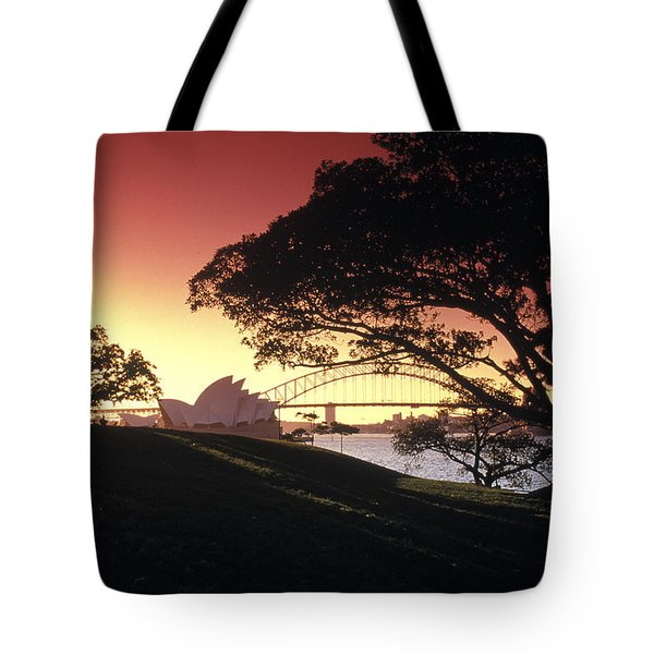 Opera Tree Tote Bag by Sean Davey