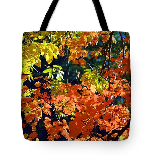 Orange And Yellow Tote Bag by Kathleen Struckle
