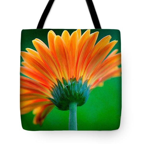 Orange Blast Tote Bag by Lois Bryan