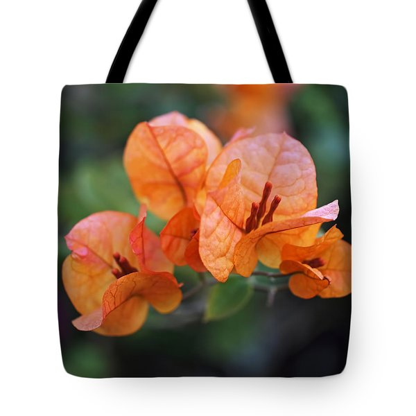 Orange Bougainvillea Tote Bag by Rona Black