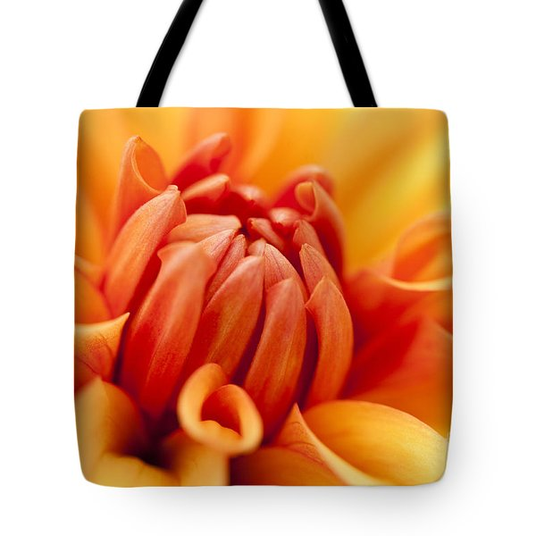 Orange Centre Tote Bag by Anne Gilbert