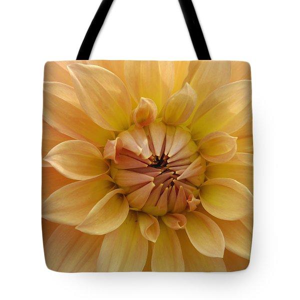 Orange Dahlia Closeup Tote Bag by Matthias Hauser