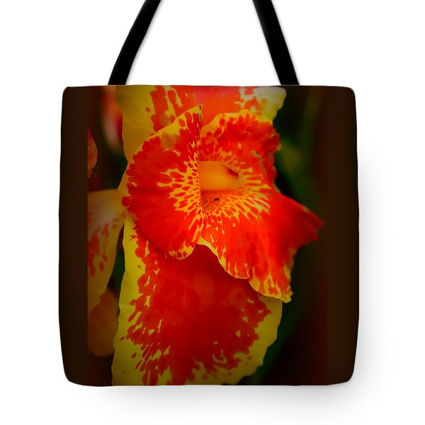 Orange Delight Tote Bag by Debra Forand