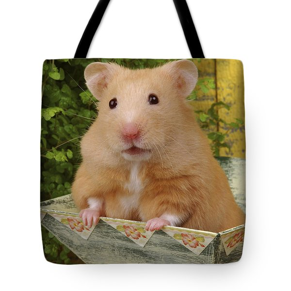 Orange Hamster Ha106 Tote Bag by Greg Cuddiford