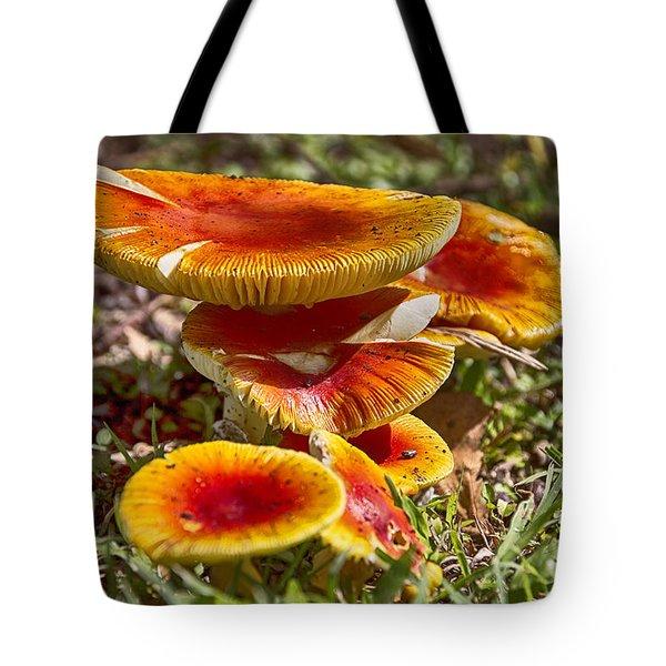 Orange V4 Tote Bag by Douglas Barnard