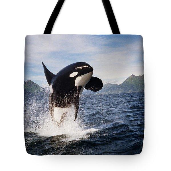 Orca Breach Tote Bag by Richard Johnson