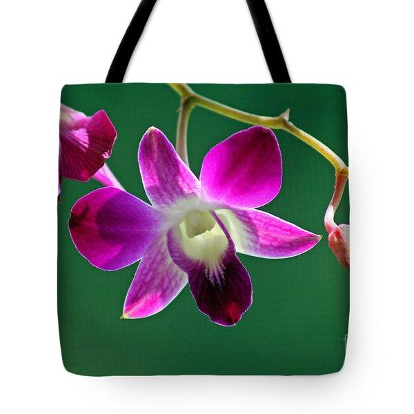 Orchid Flower Tote Bag by Karen Adams