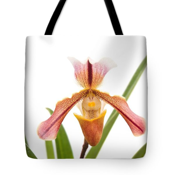 Orchid - Will The Slipper Fit  Tote Bag by Mike Savad