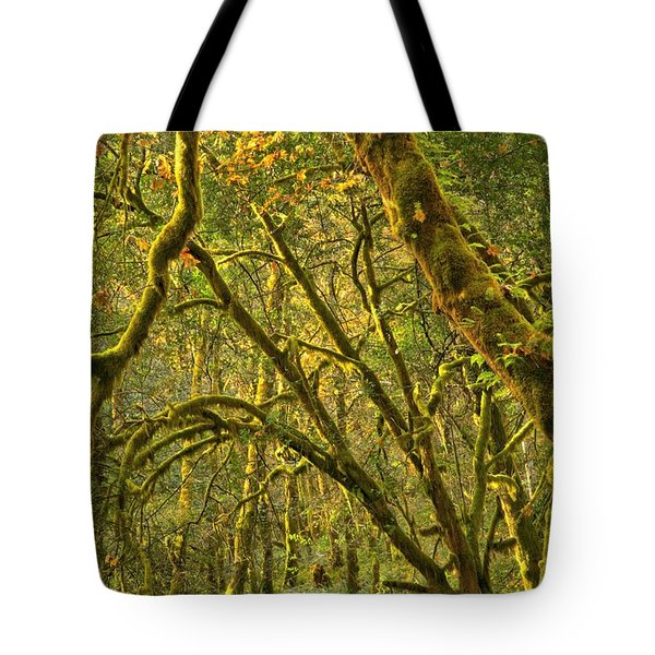 Oregon Rainforest Portrait Tote Bag by Adam Jewell