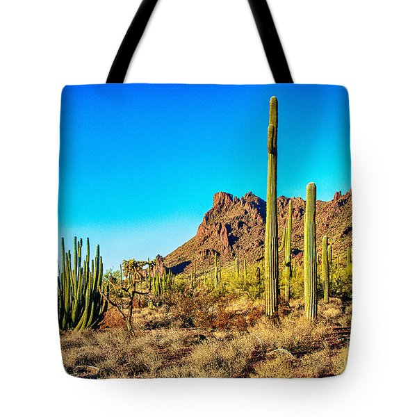 Organ Pipe Cactus National Monument Late Afternoon Tote Bag by  Bob and Nadine Johnston