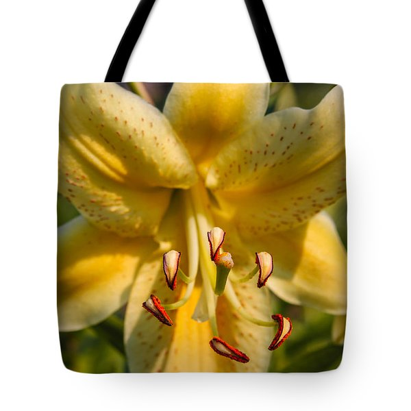 Oriental Lily Tote Bag by Omaste Witkowski