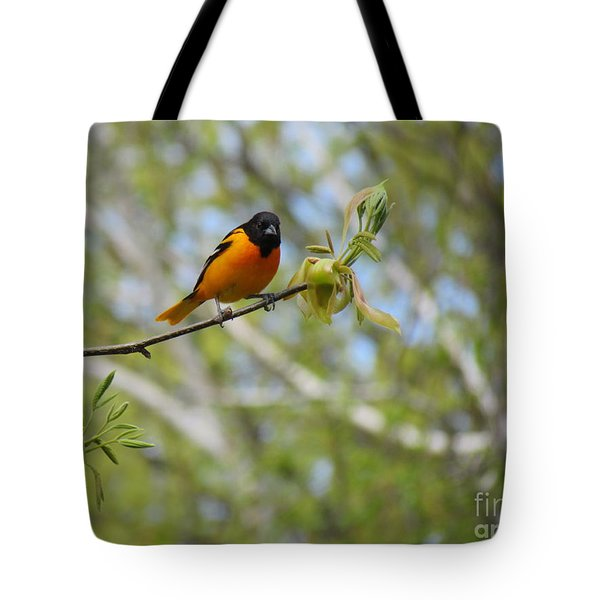 Oriole Tote Bag by Randi Shenkman