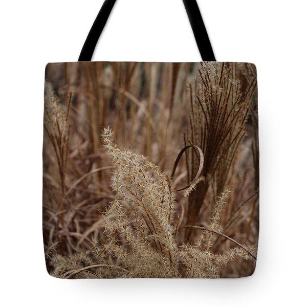 Ornamental Grass Tote Bag by Arlene Carmel