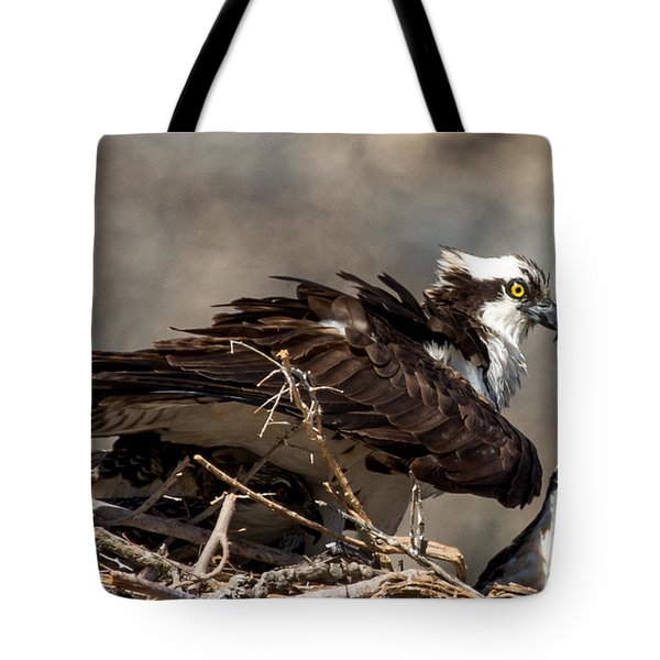 Osprey Family Huddle Tote Bag by John Daly