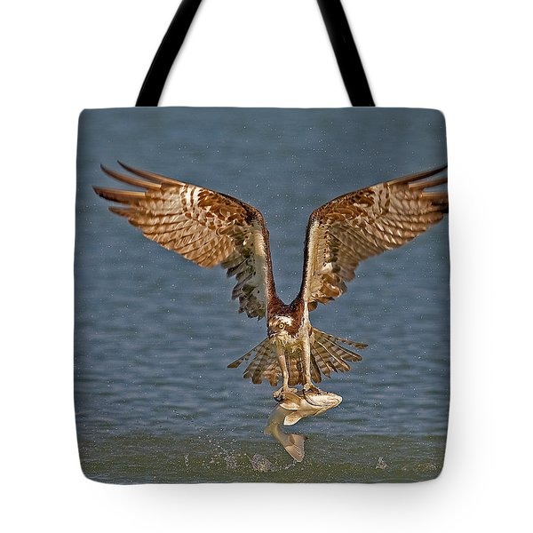 Osprey Morning Catch Tote Bag by Susan Candelario