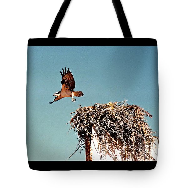 Osprey Tote Bag by Phyllis Kaltenbach