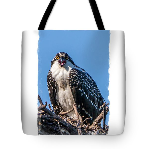 Osprey Surprise Party Card Tote Bag by Edward Fielding