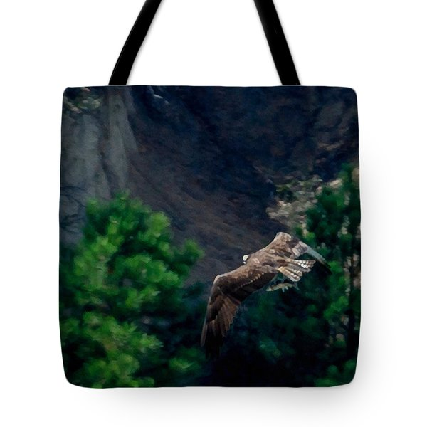 Osprey With Fish Tote Bag by Ernie Echols