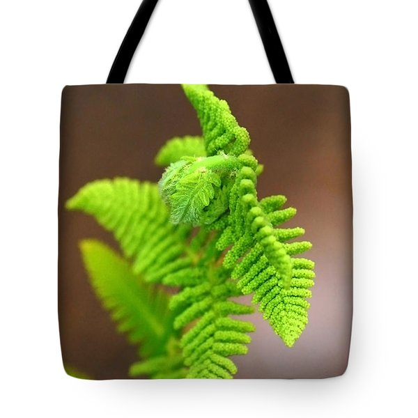 Ostrich Fern Tote Bag by Christina Rollo