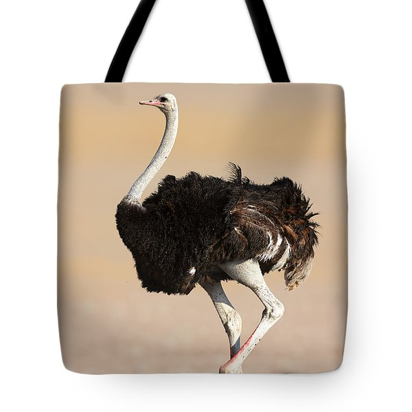 Ostrich Tote Bag by Johan Swanepoel