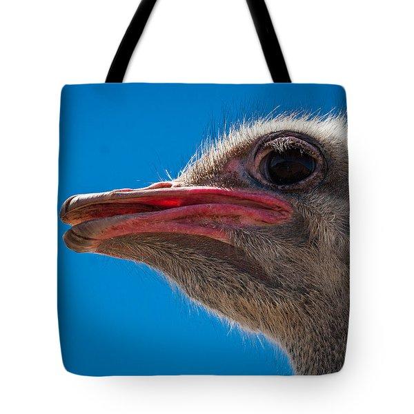 Ostrich Profile Tote Bag by Jean Noren