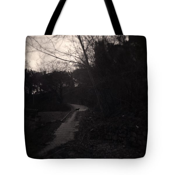 Otherwhere Tote Bag by Taylan Apukovska