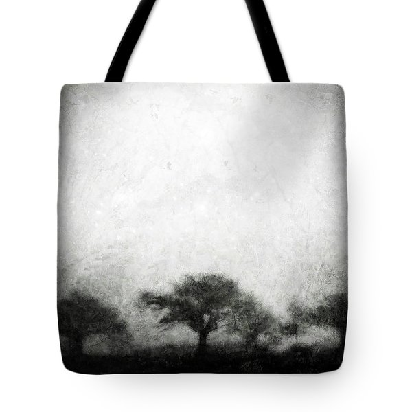 Our Moment In Patience Tote Bag by Brett Pfister