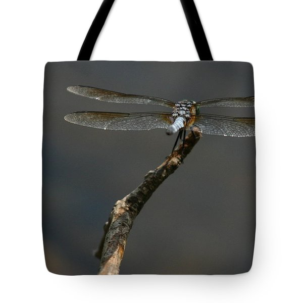 Out On A Limb Tote Bag by Karol Livote