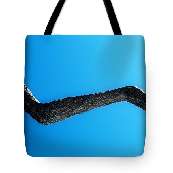 Outreach Tote Bag by Lisa Knechtel