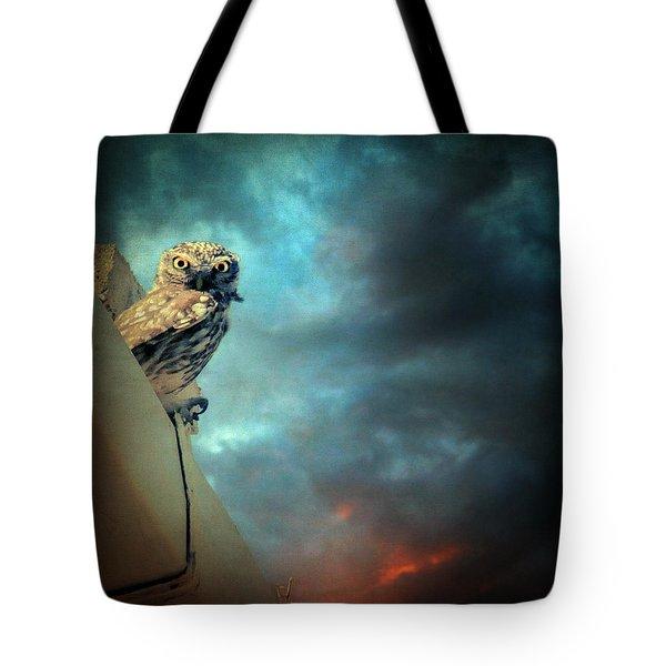 Owl Tote Bag by Taylan Soyturk