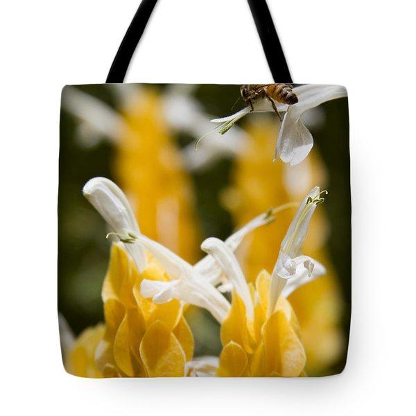 Pachystachys Lutea - Lollipop Plant - Golden Candle - Shrimp Plant Tote Bag by Sharon Mau