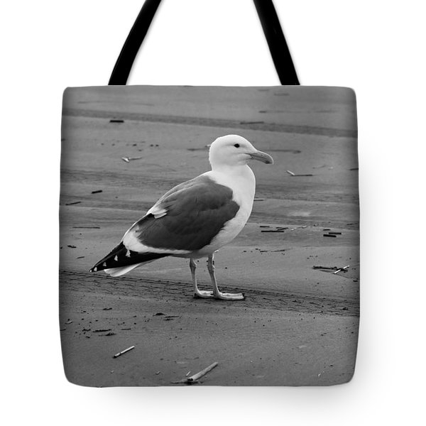 Pacific Seagull In Black And White Tote Bag by Jeanette C Landstrom