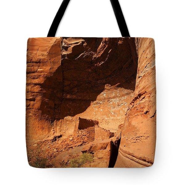 Palatki Tote Bag by Mike  Dawson