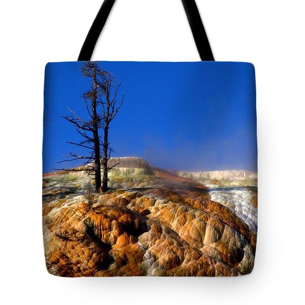 Palette Spring Steam Tote Bag by Brian Harig