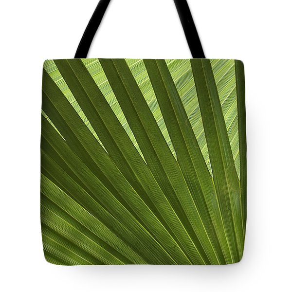 Palm Abstract Tote Bag by Patty Colabuono