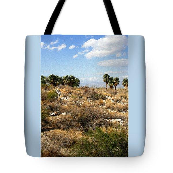 Palm Springs Indian Canyons View  Tote Bag by Ben and Raisa Gertsberg