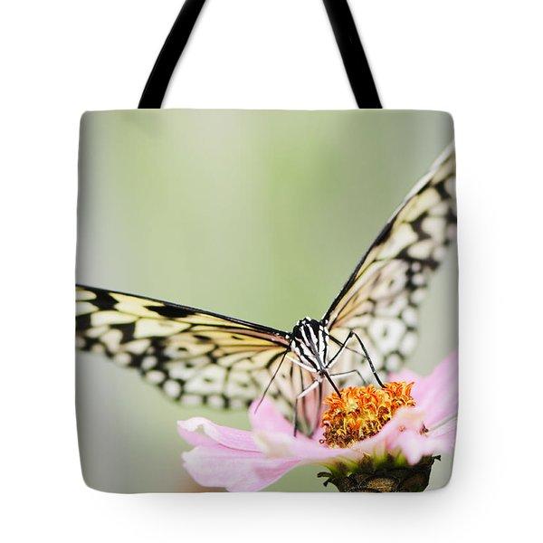Paper Kite Butterfly On Zinnia Tote Bag by Oscar Gutierrez