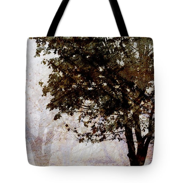Park Benches Tote Bag by Carol Leigh